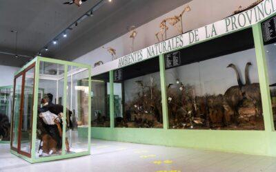 El Museo Provincial Antonio Serrano realizará desinfección y desinsectación de colecciones
