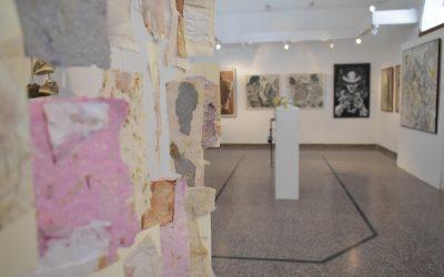 Se conocieron las obras seleccionadas para la edición 2021 del Salón Provincial de Artes Visuales de Entre Ríos